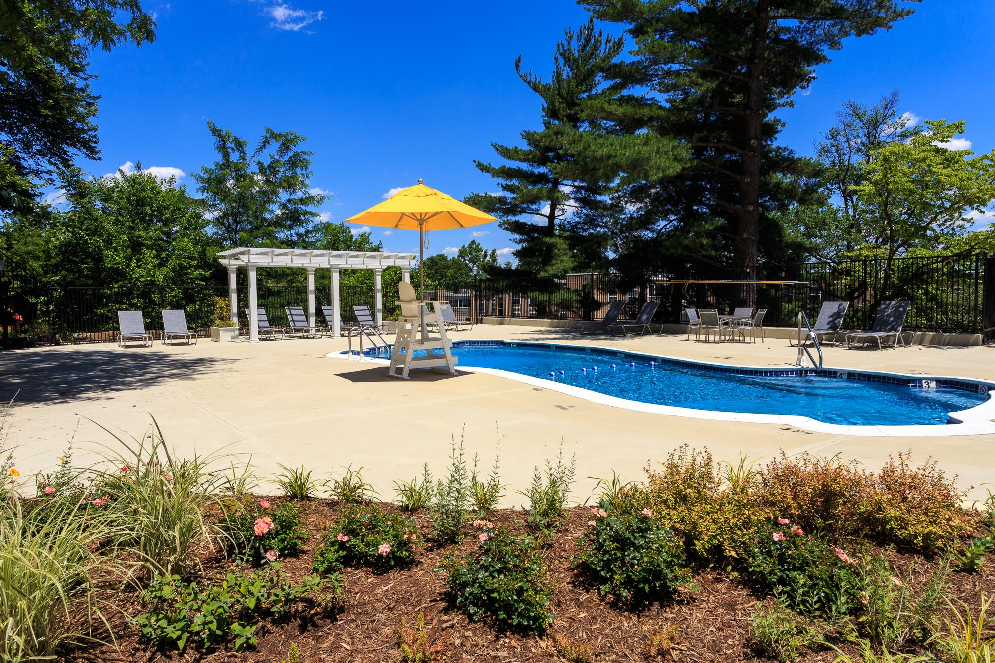Vista_Pool_June_2017_CMC-8638